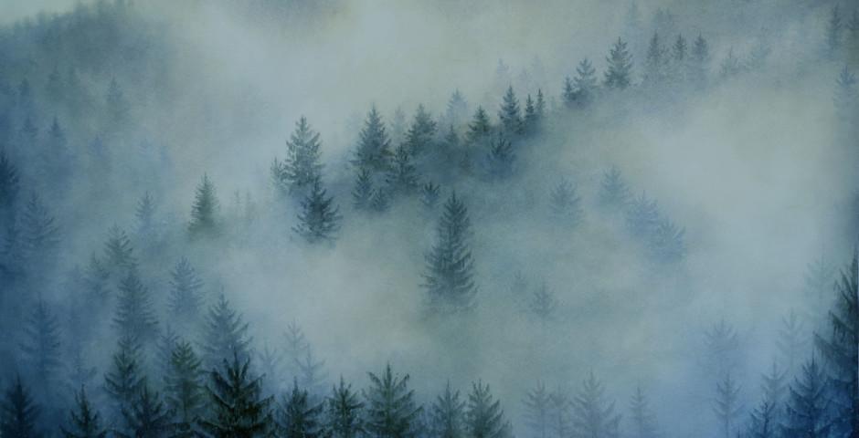 la nebbia che fugge via- acquerello 125x176- 2017