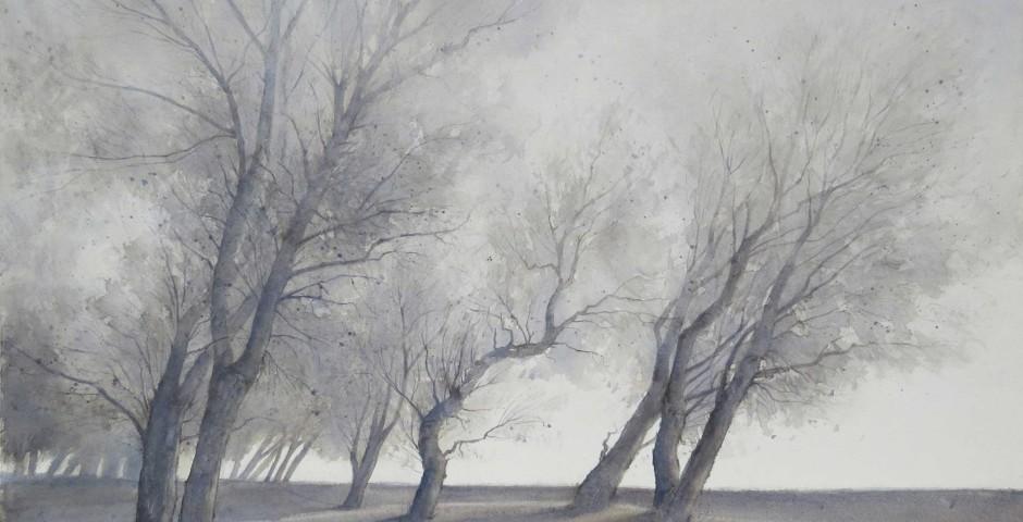 alberi - acquerello 70x90 - 2016