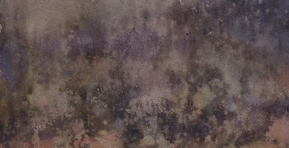 radura - acquarello 40x30 - 2016